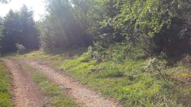Camino carretil
